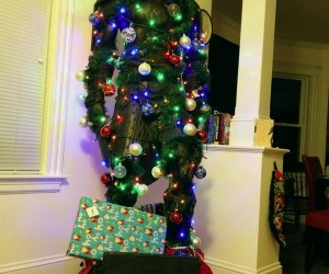 Skyrim Dragonborn Nord Christmas Tree Could Probably Handle the Cold Outside