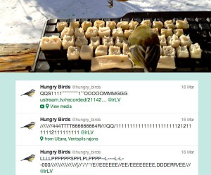 Birds on Twitter: Real Birds are Tweeting Online (and in Real Life)