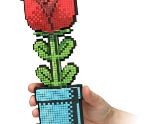 8-Bit Rose: From Player 1 to Player 2