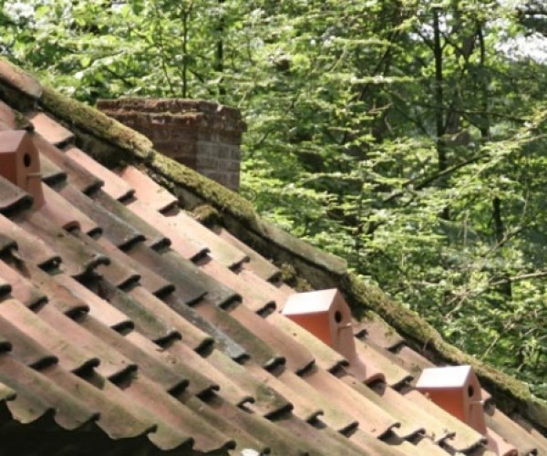 Ceramic Birdhouse Roof Tiles Help You Co-Exist with Your Avian Neighbors