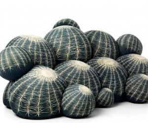 Canapé Cactus Couch & Ottoman: Is It Getting Prickly in Here?