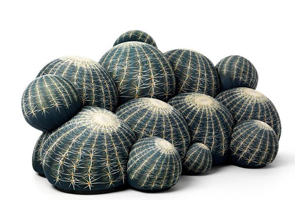 canap cactus couch ottoman is it getting prickly in