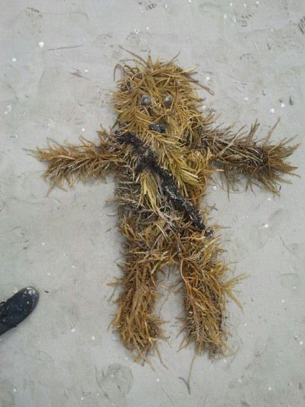 chewbacca seaweed