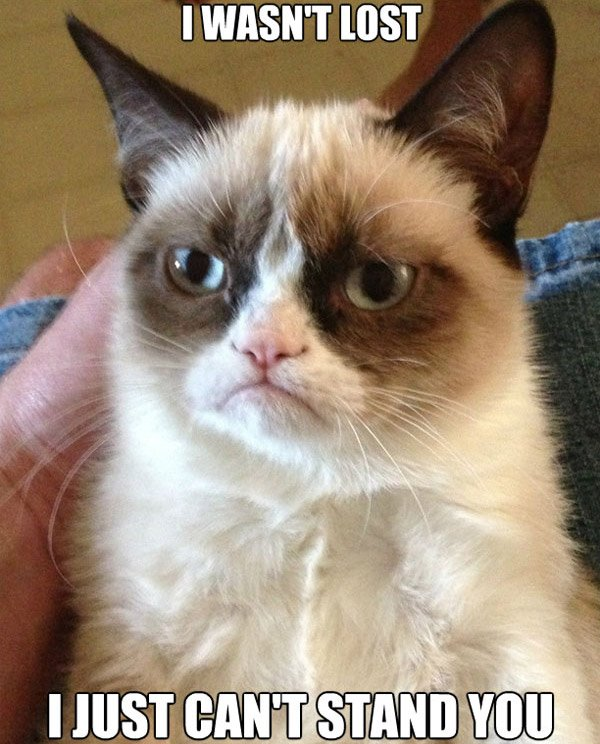 grumpy cat cant stand you