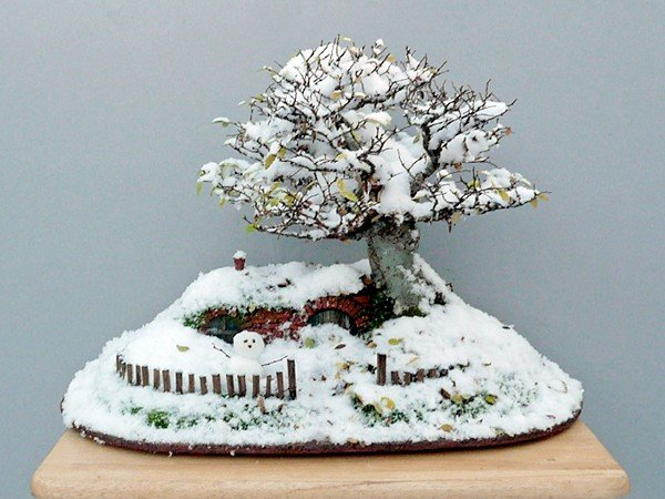 lord-of-the-rings-bag-end-hobbit-hole-bonsai-by-chris-guise-6