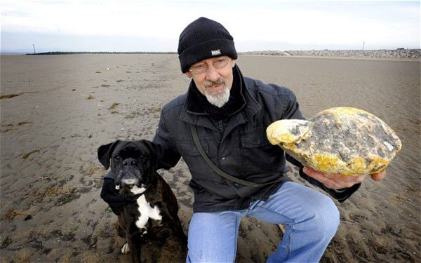 Ambergris: Whale Vomit Could Pay off Your Mortgage