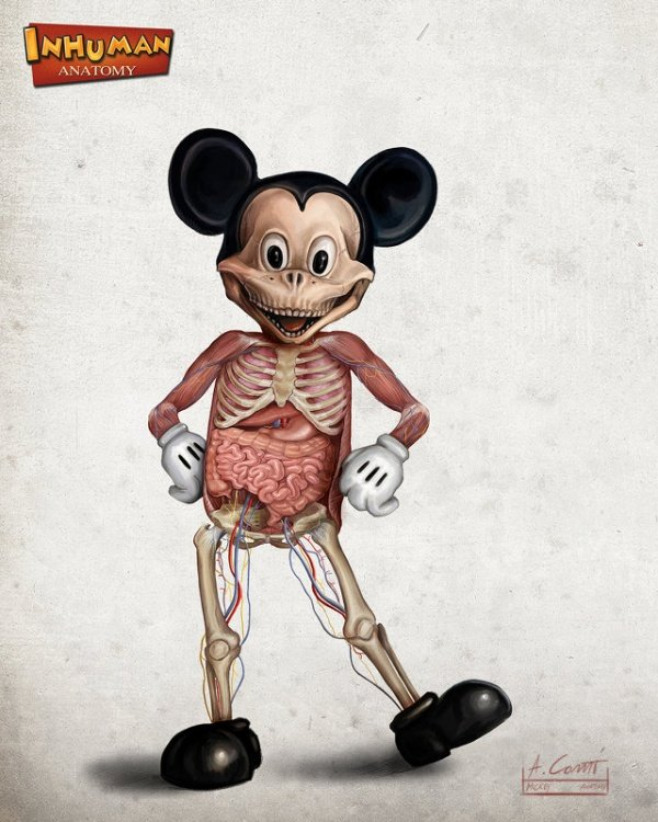 Disney Cartoon Character Anatomy