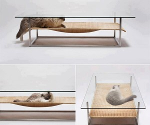 A Coffee Table for Cats