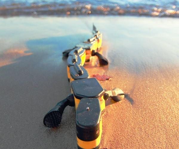 Robot Salamander Crawls and Swims Its Way into Our Hearts