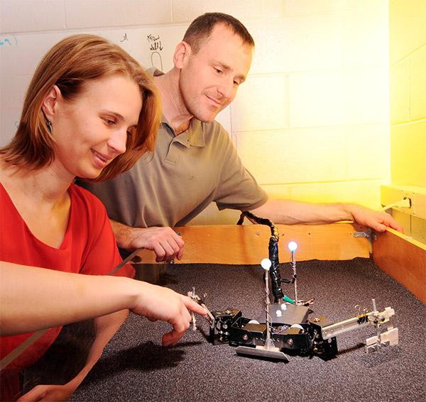 flipperbot turtle robot