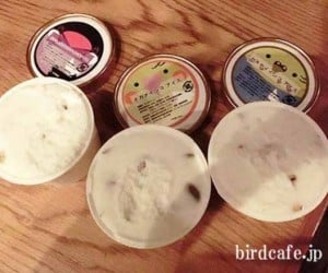 Bird Ice Cream Flavors Will Make Your Taste Buds Go Cuckoo