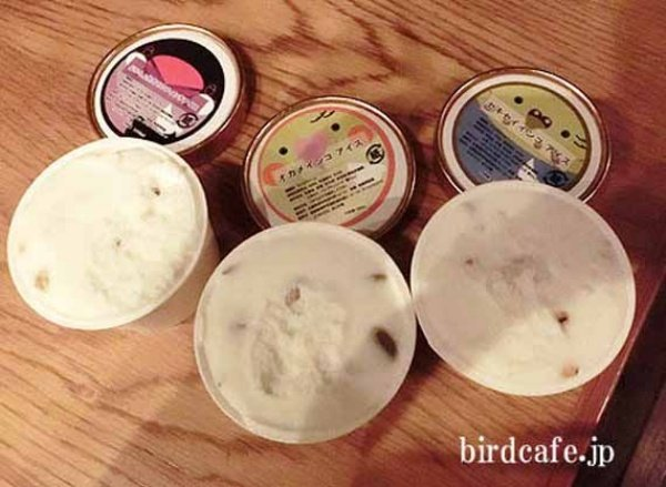 Bird Flavored Ice Cream