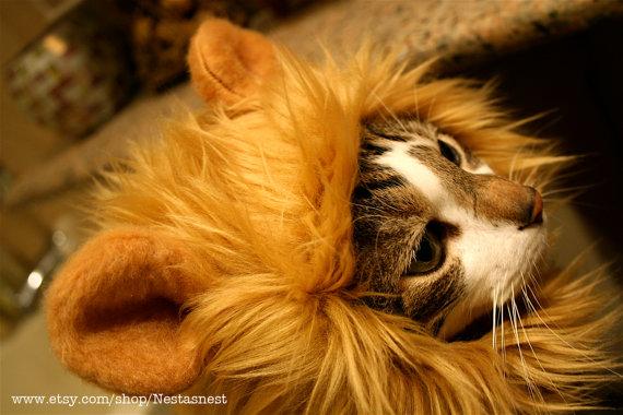 Lion Hat1
