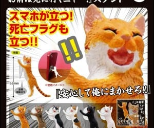 Cat Scratching Post Smartphone Stand Is a Real Head-Scratcher
