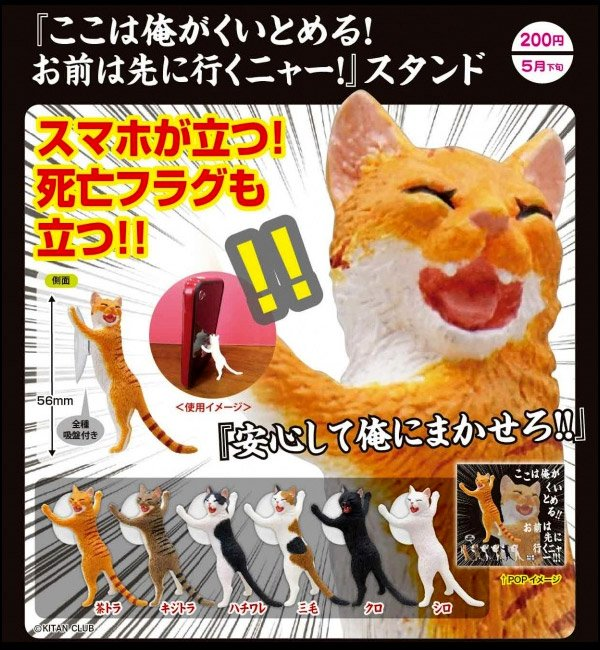 cat_scratch_phone_stand