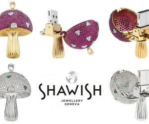 Is There Really a Market for $32,000 Mushroom Flash Drives?