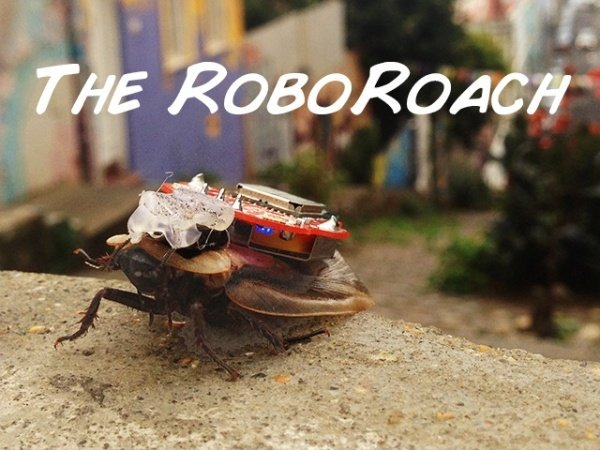 RoboRoach Kit Lets You Control a Living Roach With Your Smartphone
