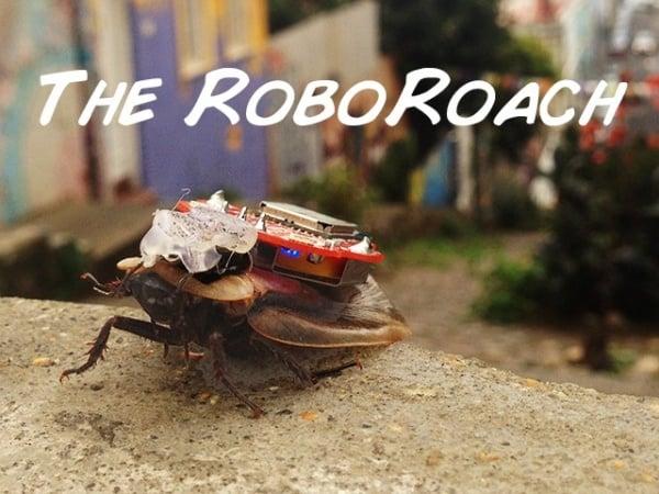 RoboRoach1