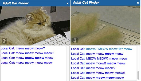 adult_cat_finder