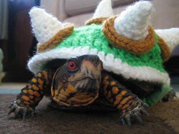 Crocheted Bowser Sweater Turns Your Turtle into King Koopa