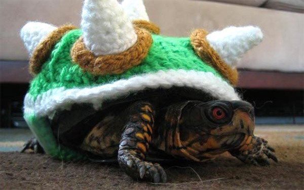 turtle bowser sweater 2