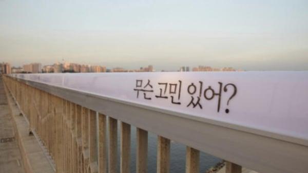 Bridge of Life1