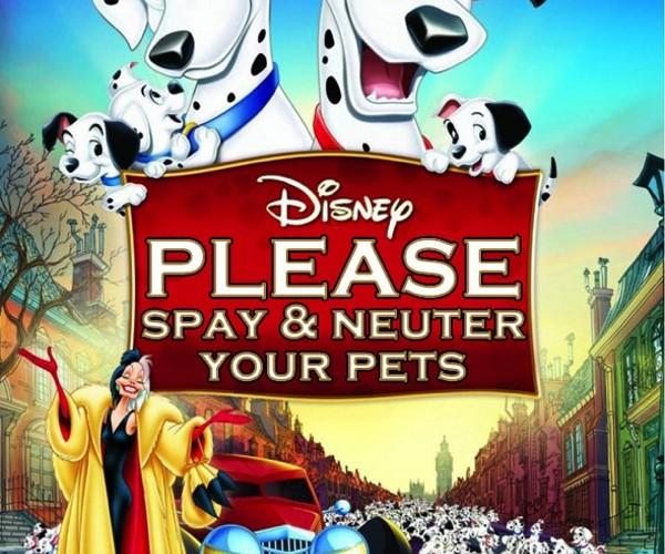 Disney Honest5