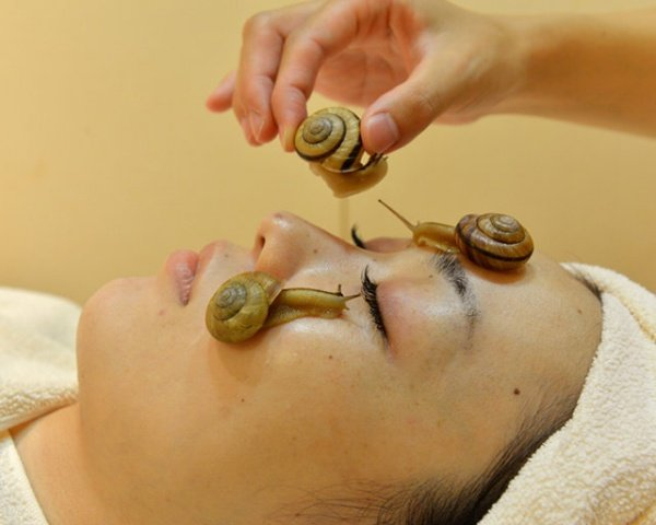 Latest Anti-Aging Craze is Crazy: Snail Facials (aka Mollusk Masks)