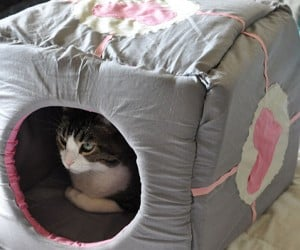 Companion Cube Cat House (or Is It a Storage Cube?)