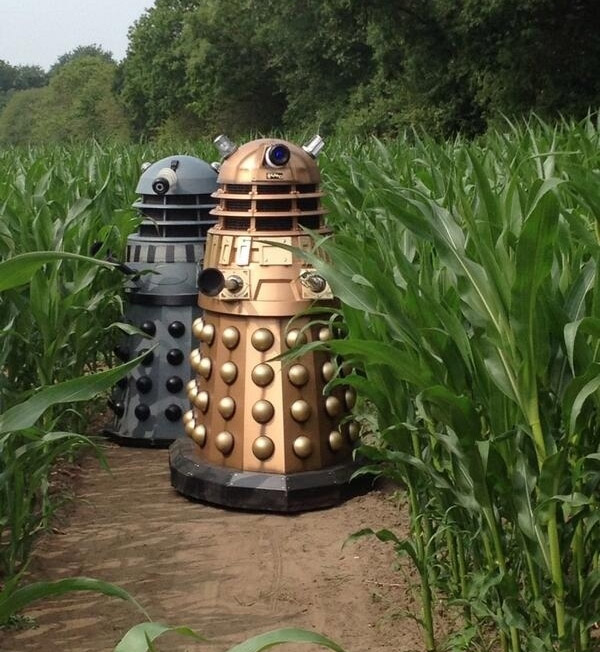 Doctor Who Corn Maze: Orville Reden-Doctor Approves - Technabob
