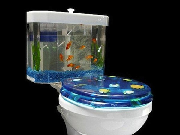 Fishbowl Toilet: Swim or Get off the Pot