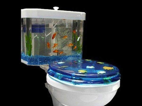 fish toilet