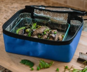 HotLogic Portable Mini Oven Warms Your Lunch While You Work