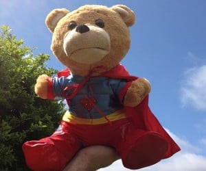 Supertoy Talking Teddy Bear: Thunder Buddies for Life!