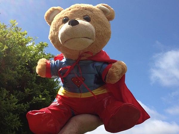 Supertoy Talking Teddy Bear: Thunder Buddies for Life!
