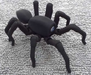 T8 Robot Spider Creeps Its Way into Our Hearts