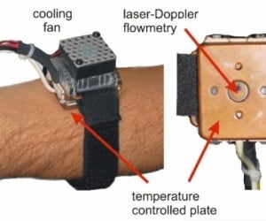 How Old Is Your Body? This Mortality Wrist Device Will Tell You