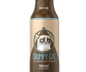 Grumpy Cat Grumppuccino: Because Grumpy Cat Hates Starbucks