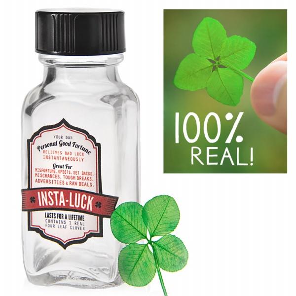 Insta Luck