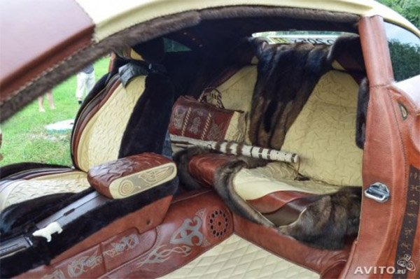bison leather interior