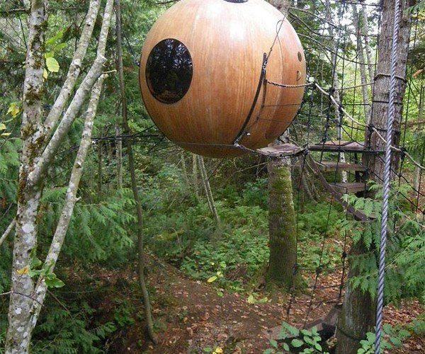 Free Spirit Spheres Hotel: Sleep in the Trees