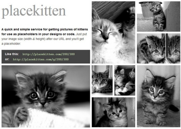 Placekitten: Let Kitties Take the Place of Blank Spaces in Web Designs
