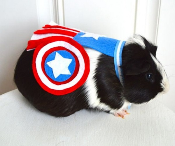 A New Breed of Superheroes: Super Costumes for Rodents and Other Little Critters