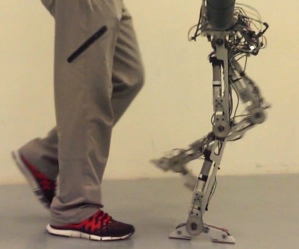 AMBER 2 Robot Mimics Human Foot Movements