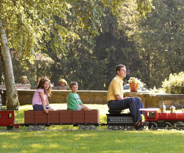Own Your Own $23,000 Mini Ridable Train