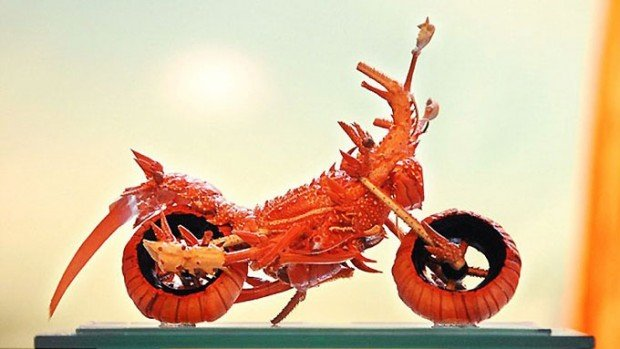 lobster art1