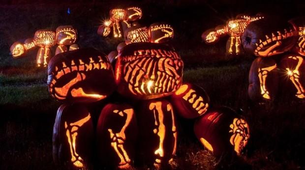 pumpkin dinosaur1