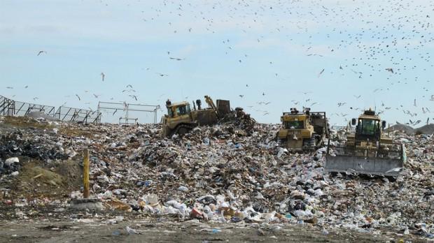 garbage dump 620x348