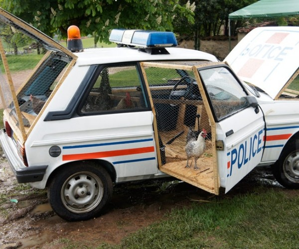 Police Car/Chicken Coop: Here Comes the Fuzz, I Mean the Feather