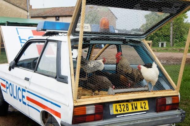 police coop1